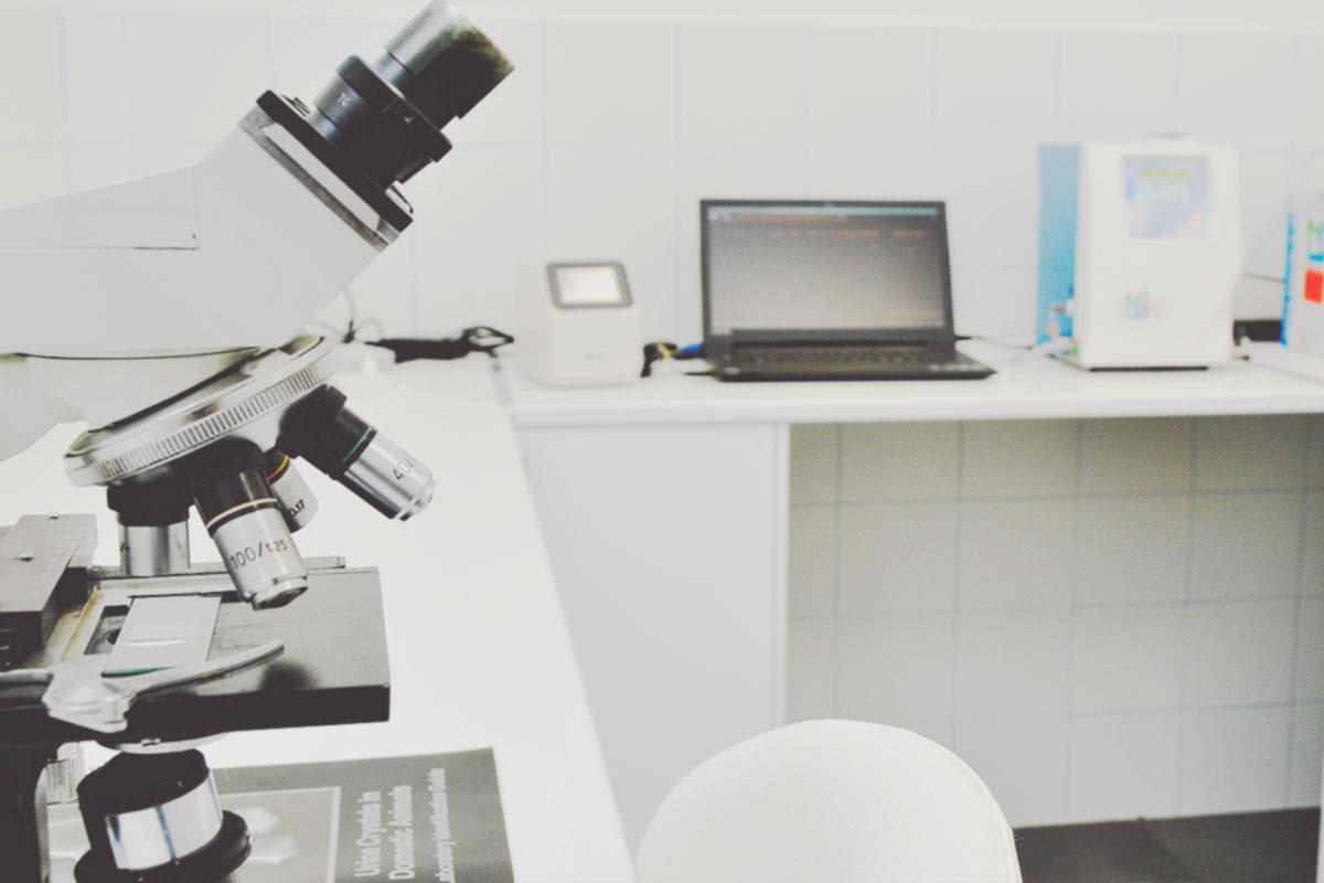 servicios veterinarios en Reus laboratorio